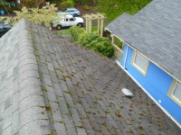 Seattle Window Cleaning, Seattle Roof Cleaning