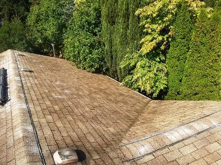 A Fine Reflection Roof Cleaning, Gutter Cleaning, Moss Treatment