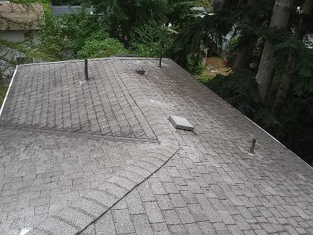 Renton, Bellevue, Redmond and Eastside, roof and window cleaning, gutter cleaning service, moss treatment, pressure washing